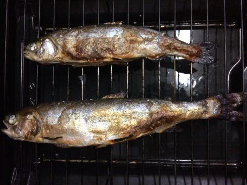 グリーンパーク不忘フィッシングパーク釣果焼き魚
