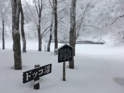蔵王温泉スキー場ドッコ沼