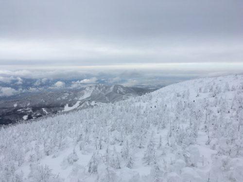 蔵王温泉スキー場樹氷原
