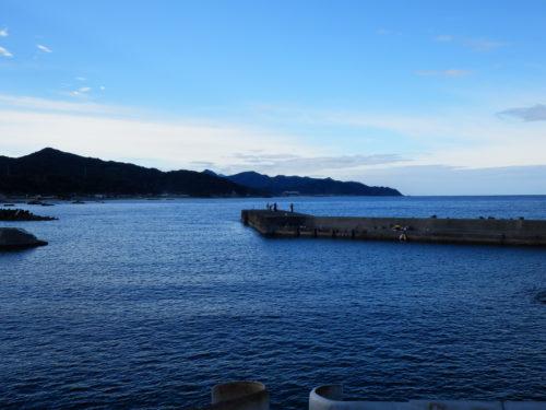 アオリイカ中浜漁港