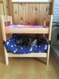 サスケとラムの2段ベッド