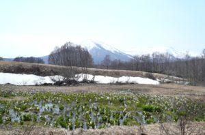 十和田湖奥入瀬