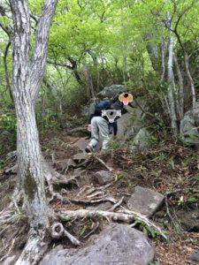 泉ヶ岳表コース2