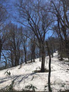 北泉ヶ岳残雪コース