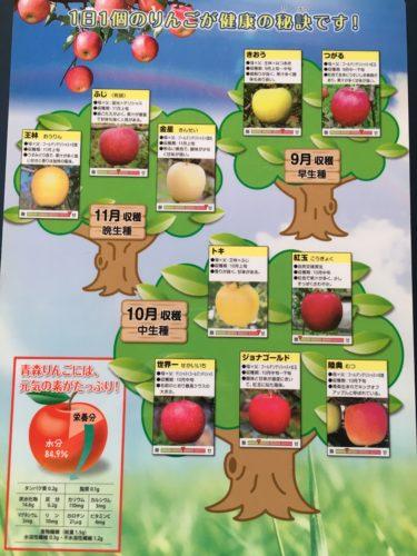 リンゴの種類