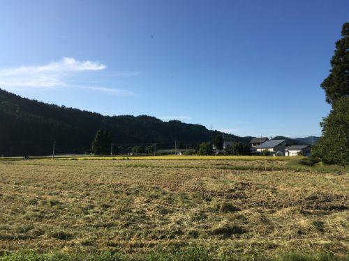 秋ノ宮田園風景