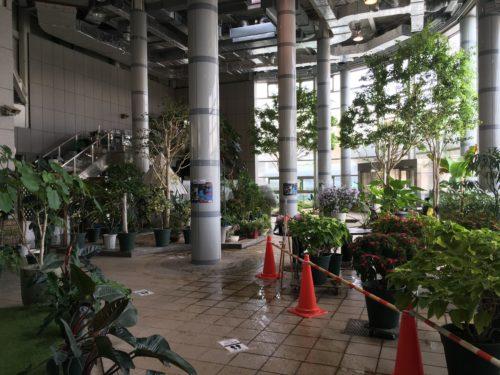 七北田公園植物園