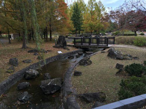 七北田公園小川