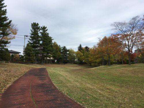 七北田公園マラソンコース