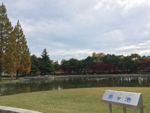 七北田公園泉ヶ池