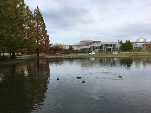 七北田公園池の景色